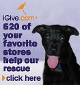 igive.com